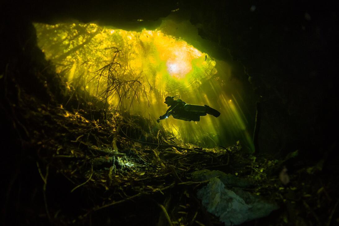 11 imágenes que te harán envidiar a los fotógrafos de la naturaleza 2163...