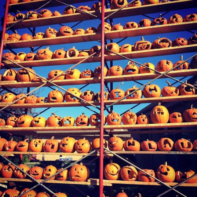 The Great Highwood Pumpkin Festival