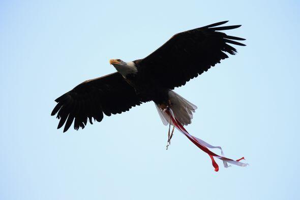 Pero no fue el único duelo del día. En Portugal las Aguilas del Benfica...