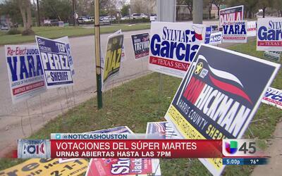 Flujo constante de votantes en Ripley House en Houston