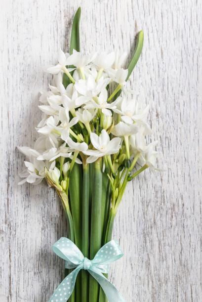 Las flores de color amarillo o las combinaciones con espigas secas bien...