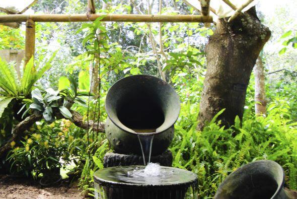 El agua es sinónimo de vida, energía, y fuerza, pero, ¿sabías que además...