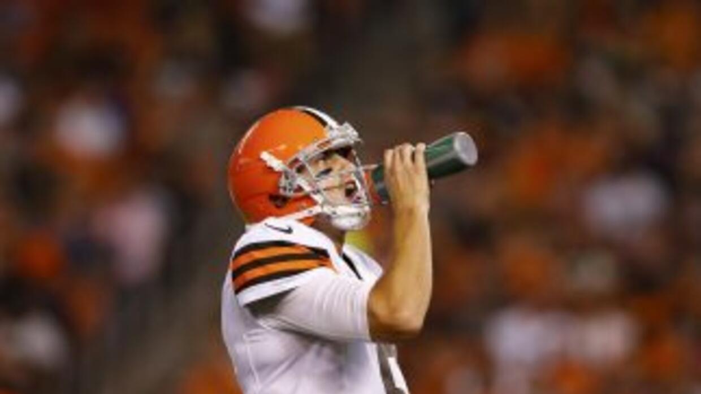 Brian Hoyer (AP-NFL).
