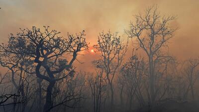 La quema de biomasa para despejar terreno emite contaminantes a la atm&o...