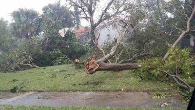 North Miami se vio afectado también por la fuerte tormenta de est...