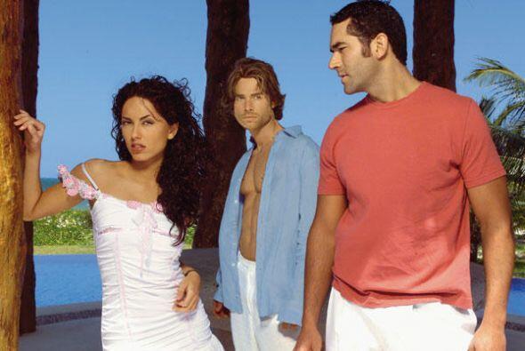 El productor José Alberto Castro la llevó a la pantalla chica en el 2004.