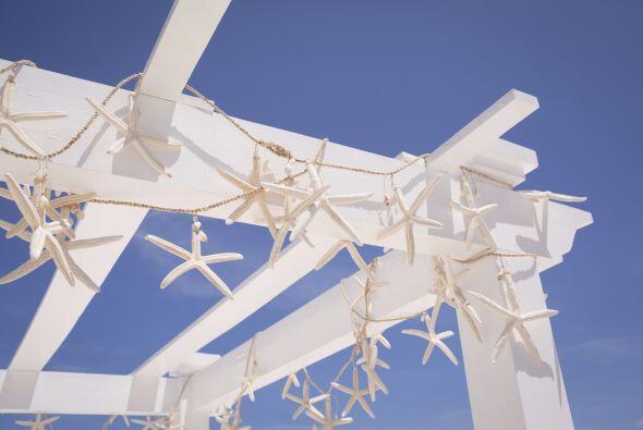 También puedes optar por decorar la estructura o las carpas si son total...