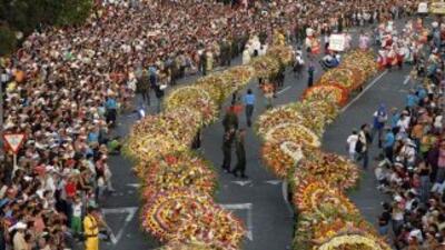 Exhiben un gigantesco tapiz de flores en el Museo de Arte de Queens.