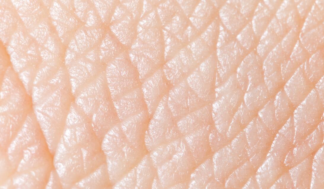 ¿Puedes adivinar de qué se tratan estas imágenes de texturas naturales?...