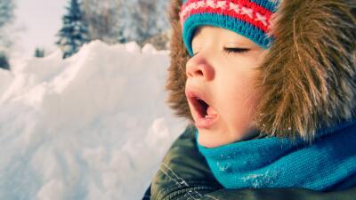 ¿La gripe volvió a atacarte este año a ti o a tu familia? Apunta estos t...