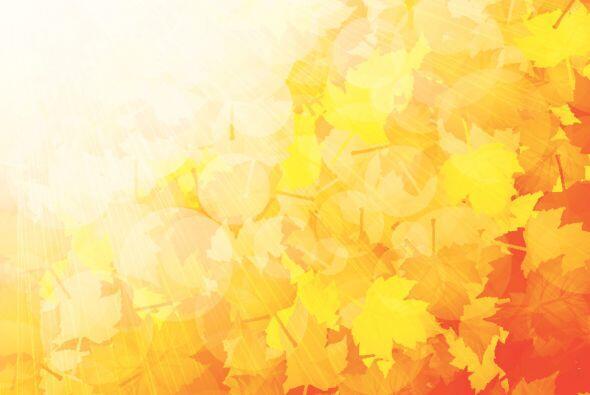 El otoño ya se siente en el ambiente, su luz y colores tan caract...