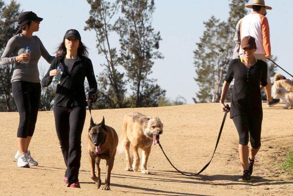 A la actriz le gusta pasear con sus perros. Más videos de Chismes aquí.