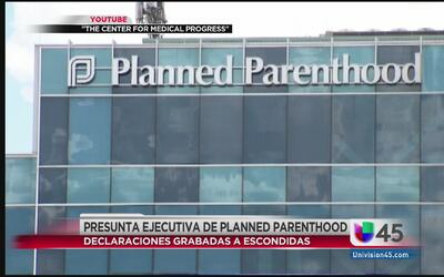 Venta secreta de partes de fetos abortados