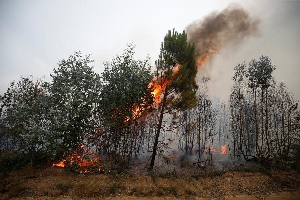 Fire Portugal