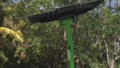 Zoológico de Miami estrena 200 paneles solares gracias al programa Solar Now de FPL