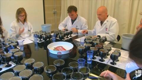 Científicos belgas usan la genética para crear la cerveza perfecta