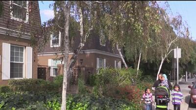 ¿Se pagó por firmas para terminar el control de renta en Mountain View?