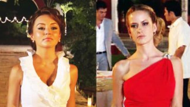 Se rumora que Angelique Boyer y Altair Jarabo tienen una fuerte rivalidad.
