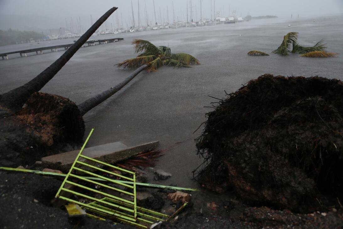 Irma Puerto Rico