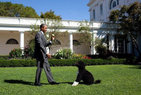 Le fue regalado a la familia Obama por el senador Edward M. Kennedy, a p...