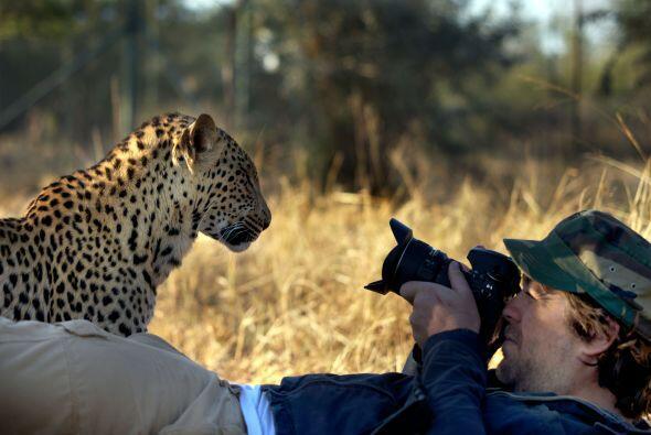Las fotografías tuvieron lugar en la Reserva Tshukudu, en la provincia s...