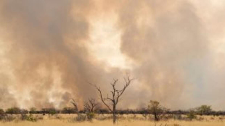 La histórica sequía que se vive en Argentina ha generado alerta en el pa...