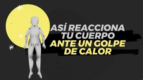 ¿Cómo reacciona tu cuerpo a un golpe de calor?