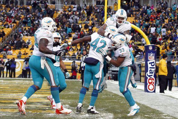 Los fanáticos de los Dolphins ya no hablan de  la controversia  Incognit...