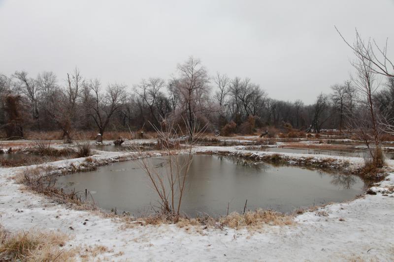 Así se ve el invierno en los parques nacionales de Estados Unidos SLEEPI...