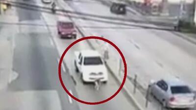 En video: Conductor arrolla a un perro que trataba de cruzar la carretera en Guatemala