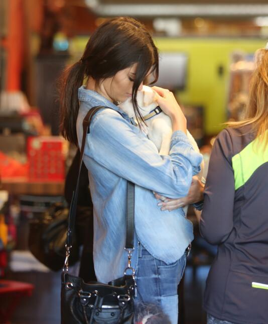 Kendall Jenner, ¿adoptó un perrito?