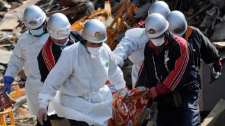 En Fukushima, la radiación filtrada ha penetrado en la tierra y el mar y...