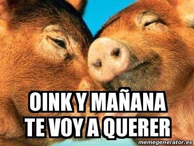 """Oink y mañana te voy a querer""."