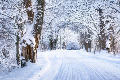 Pero también en esta temporada decembrinas se te puede antojar disfrutar...