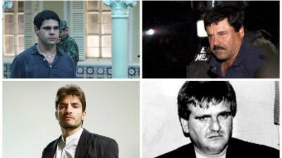 Comparativa El Chapo