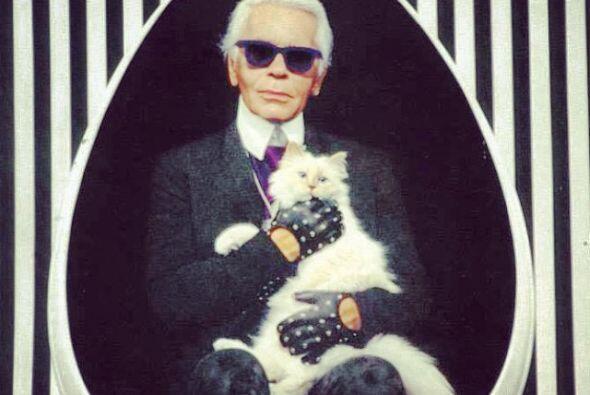 Tanto adora a este felino que han posado juntos para varias sesiones fot...