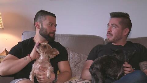 Gracias a la organización 'Men Having Babies', pareja gay en Chicago int...