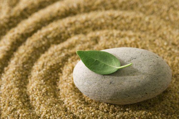 Seguro conoces los pequeños jardines zen que muchas personas tienen en s...