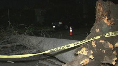 Estos son los estragos causados por los fuertes vientos en el sur de California