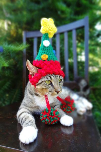 Tal vez quieras que lleve el espíritu navideño a todas partes y de ser a...