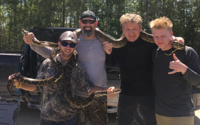 Gordon y su hijo cazaron tres serpientes en las riveras dle canal Tiebac...