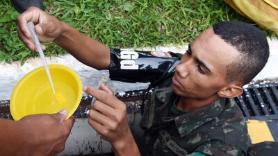 Miembro de las fuerzas armadas de Brasil busca larvas del Aedes aegypti.