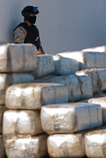 """En 2010 también se """"han decomisado 2,172.23 toneladas de marihuana, 17,3..."""