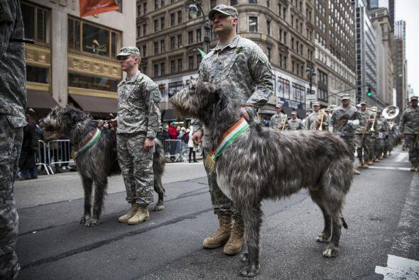 El desfile es televisado durante sus casi cuatro horas de duración por e...