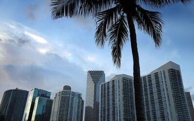 En el área metropolitana de Miami, Ft. Lauderdale y West Palm Bea...