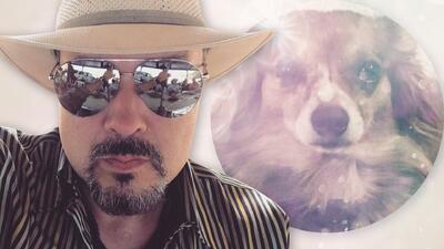 Después de  la muerte accidental de su mascota, Pepe Aguilar habla públicamente de la aerolínea
