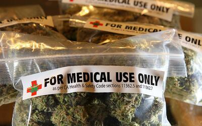 Crece la industria del cannabis medicinal en Puerto Rico