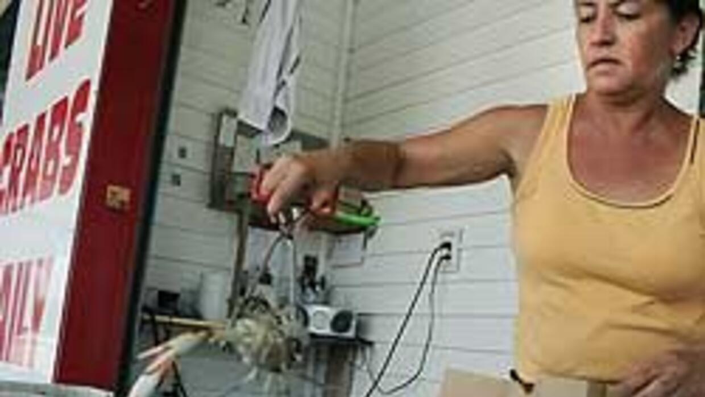 Industria del cangrejo en EU se sostiene con trabajadoras mexicanas f9a3...