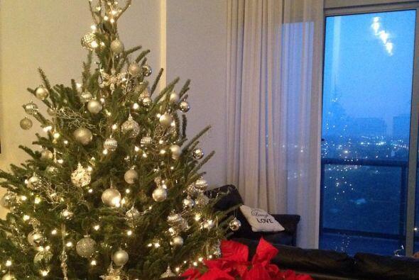 Desde hace varias semanas Ana compartió una foto de su árb...