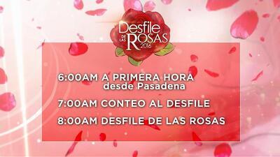 Programación de Univision 34 para seguir el Desfile de las Rosas en vivo